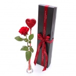 Single Red Rose & Lollipop Gift Box