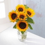 Sunflowers (5 Stems)