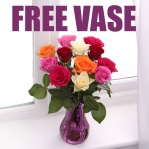 Colourful Roses (FREE Amethyst Vase)
