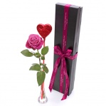Single Pink Rose & Lollipop Gift Box