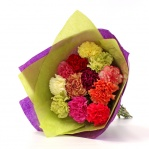 Colourful Carnation Bouquet