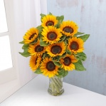 Sunflowers (10 Stems)