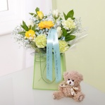 Baby Boy Gift Bag & Teddy Bear